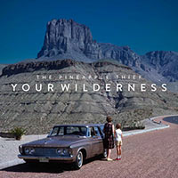 the-pineapple-thief-your-wilderness