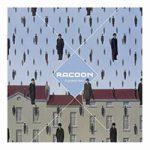 racoon-liverpool-rain